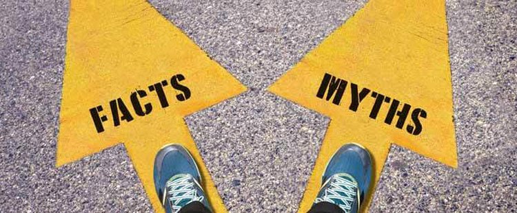 Shoes of a person standing on a road with two arrows pointing to facts and myths